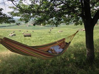 summer_relax_chill_summer